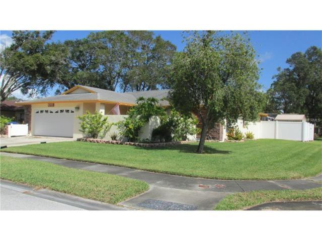6715 Deer Pond Lane N, Pinellas Park, FL 33781 (MLS #U7835810) :: White Sands Realty Group