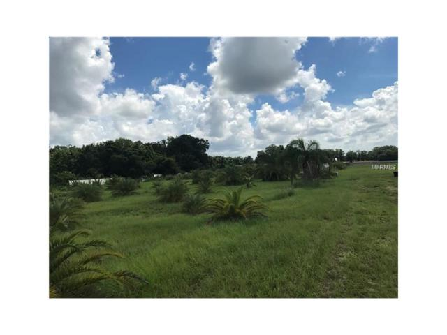 000 Popago Estates Lot 3 Lane, Dover, FL 33527 (MLS #U7835816) :: Griffin Group