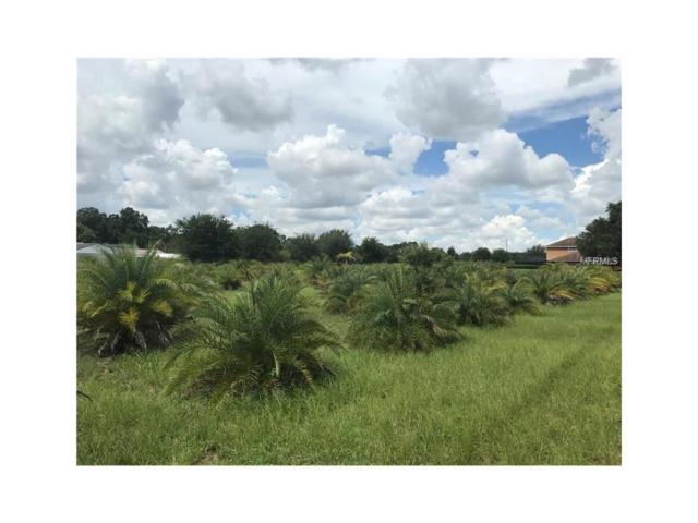 000 Popago Estates Lane, Dover, FL 33527 (MLS #U7835827) :: Griffin Group