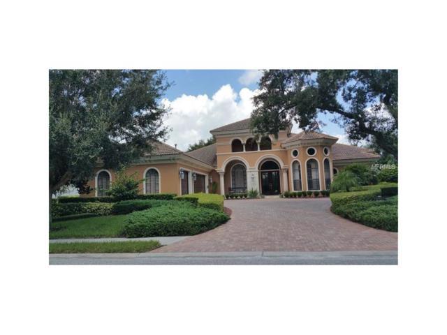 9749 Milano Drive, Trinity, FL 34655 (MLS #U7835874) :: Team Bohannon Keller Williams, Tampa Properties