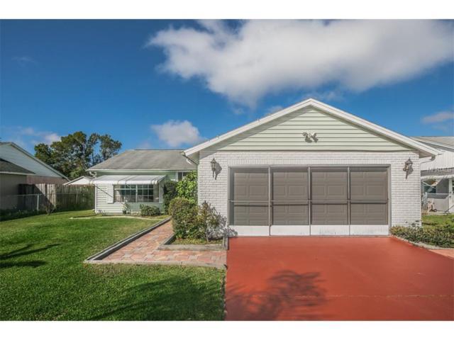 3287 Piccard Loop, New Port Richey, FL 34655 (MLS #U7835887) :: Griffin Group