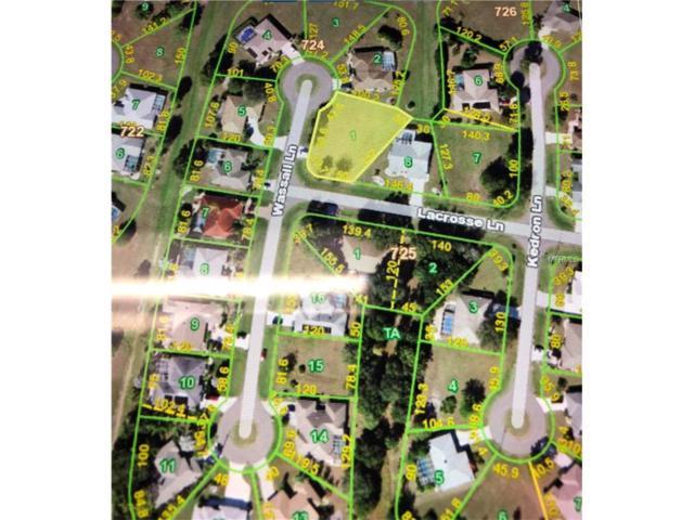 1462 Wassail Lane, Punta Gorda, FL 33983 (MLS #U7835922) :: Medway Realty