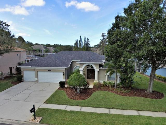 16206 Turnbury Oak Drive, Odessa, FL 33556 (MLS #U7835972) :: Griffin Group