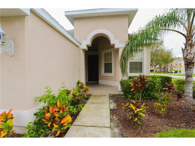 4425 English Turn Way, Wesley Chapel, FL 33543 (MLS #U7835988) :: Team Bohannon Keller Williams, Tampa Properties