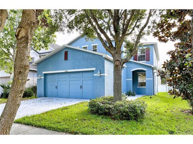 31603 Spoonflower Circle, Wesley Chapel, FL 33545 (MLS #U7837168) :: Team Bohannon Keller Williams, Tampa Properties