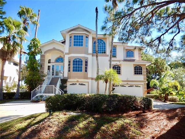 253 Sanctuary Drive, Crystal Beach, FL 34681 (MLS #U7837277) :: Chenault Group