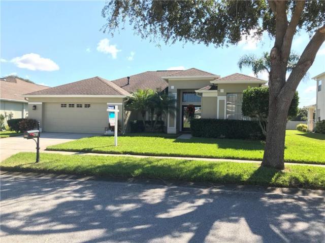 8701 Lovas Trail, Trinity, FL 34655 (MLS #U7838476) :: Delgado Home Team at Keller Williams