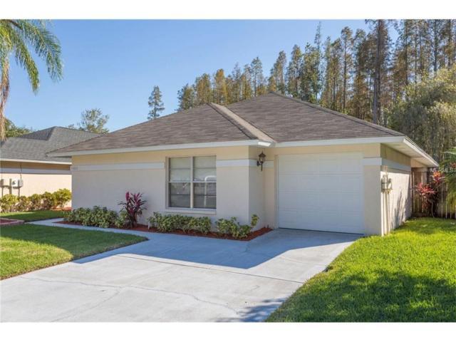 11831 Hickorynut Drive, Tampa, FL 33625 (MLS #U7838731) :: Cartwright Realty