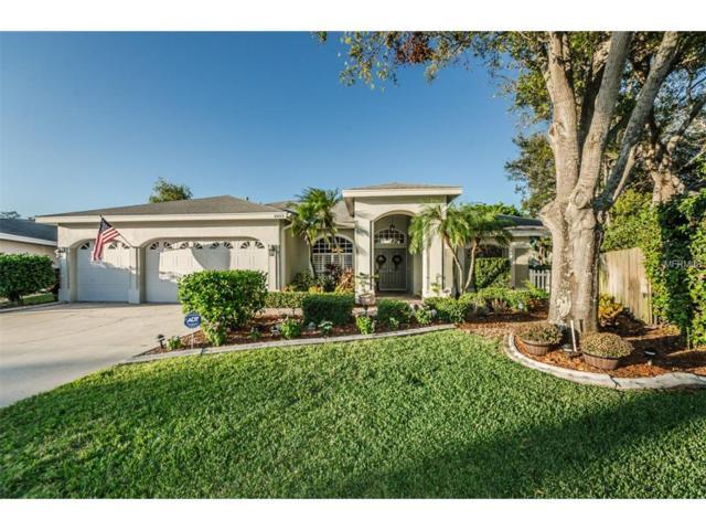 8423 Merrill Circle, Seminole, FL 33777 (MLS #U7838835) :: Revolution Real Estate