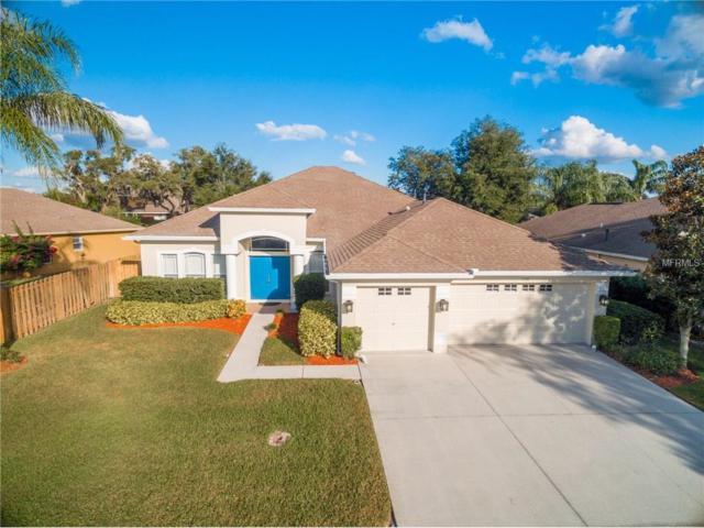 1530 Stipule Court, Trinity, FL 34655 (MLS #U7838850) :: Delgado Home Team at Keller Williams