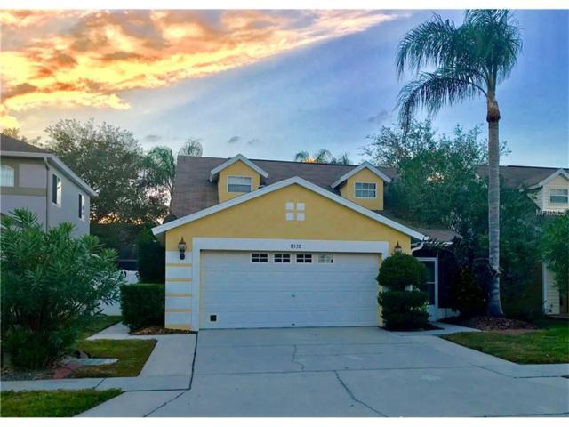 8538 Hawbuck Street, Trinity, FL 34655 (MLS #U7838855) :: Delgado Home Team at Keller Williams