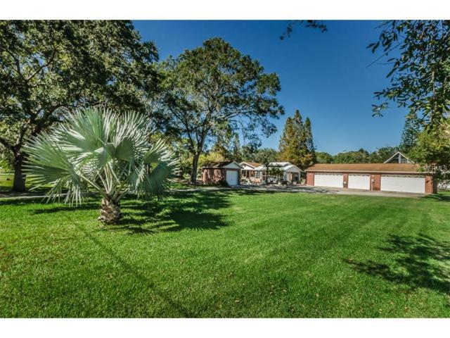 16255 49TH Street N, Clearwater, FL 33762 (MLS #U7838909) :: Revolution Real Estate
