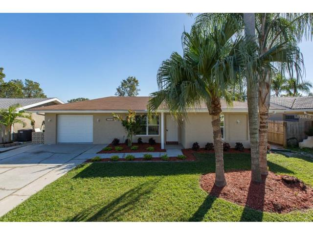 1705 Ironwood Court E, Oldsmar, FL 34677 (MLS #U7839043) :: Team Bohannon Keller Williams, Tampa Properties