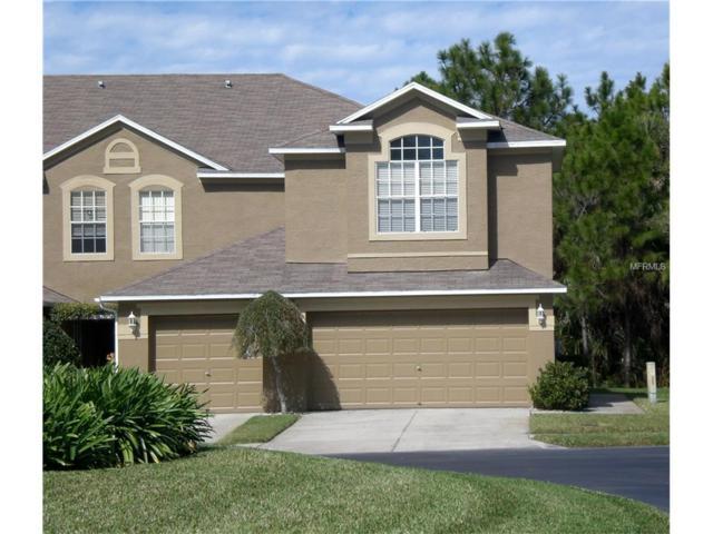18813 Duquesne Drive, Tampa, FL 33647 (MLS #U7839163) :: Team Bohannon Keller Williams, Tampa Properties