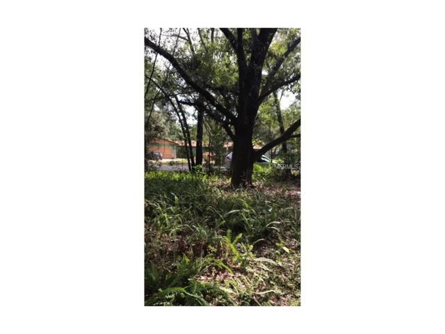 Timberwood Drive, Tampa, FL 33625 (MLS #U7839181) :: Cartwright Realty