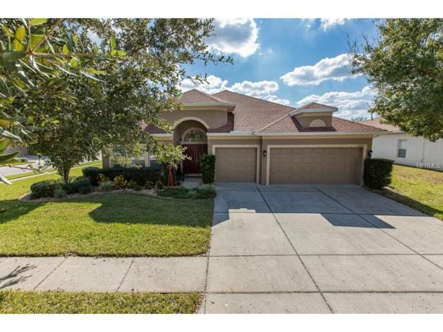 16842 Midsummer Lane, Spring Hill, FL 34610 (MLS #U7839316) :: Dalton Wade Real Estate Group