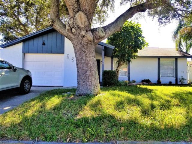 11528 107TH Avenue, Seminole, FL 33778 (MLS #U7839455) :: Dalton Wade Real Estate Group