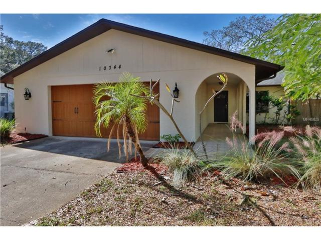 10344 Hazel Street, Seminole, FL 33778 (MLS #U7839488) :: Dalton Wade Real Estate Group
