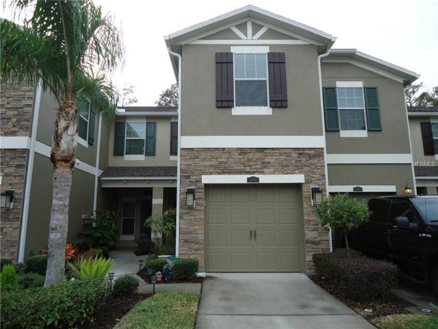 12426 Streamdale Drive, Tampa, FL 33626 (MLS #U7839495) :: Griffin Group