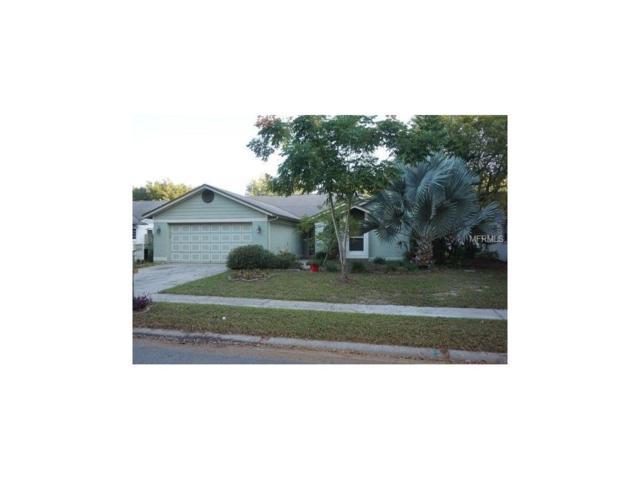 1741 Spinning Wheel Drive, Lutz, FL 33559 (MLS #U7839514) :: Griffin Group