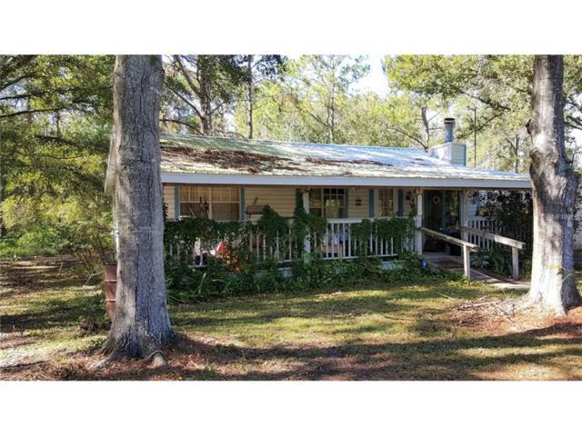7435 Tallowtree Drive, Wesley Chapel, FL 33544 (MLS #U7839548) :: Cartwright Realty