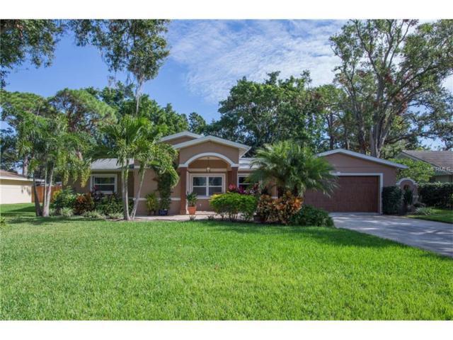 3297 Walnut Street NE, St Petersburg, FL 33704 (MLS #U7839614) :: Griffin Group
