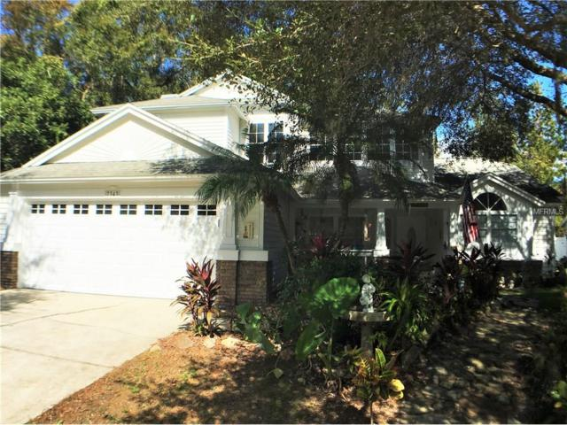 7343 Song Bird Drive, New Port Richey, FL 34655 (MLS #U7839631) :: Griffin Group