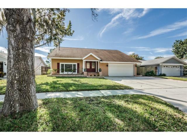 2618 Warwick Terrace, Palm Harbor, FL 34685 (MLS #U7839667) :: NewHomePrograms.com LLC