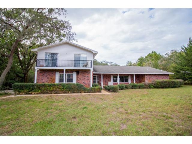 10241 Little Road, New Port Richey, FL 34654 (MLS #U7839670) :: Dalton Wade Real Estate Group