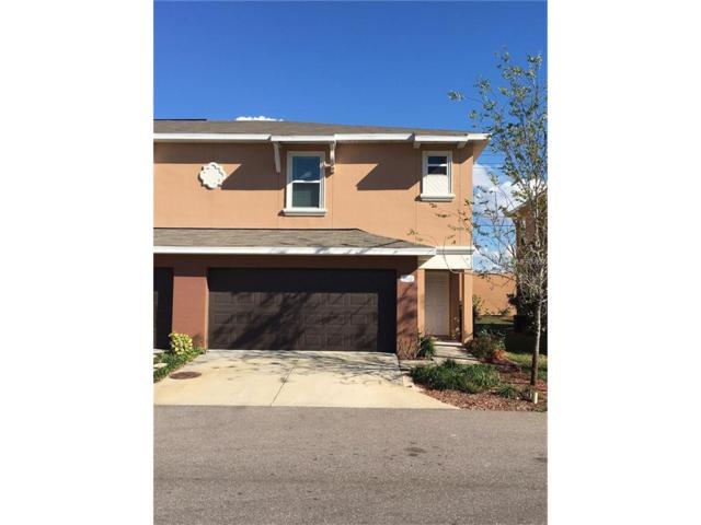 1867 Sommarie Way, Tarpon Springs, FL 34689 (MLS #U7840009) :: Revolution Real Estate