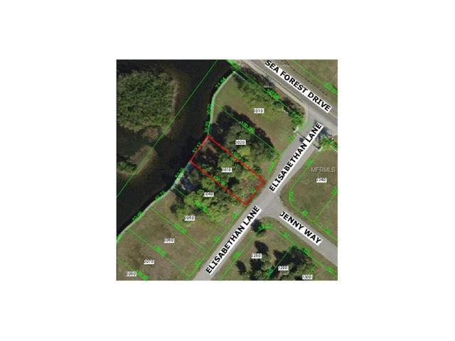 3 Elizabethan Lane, New Port Richey, FL 34652 (MLS #U7840160) :: Griffin Group