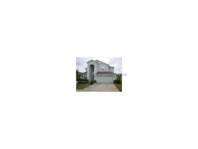 2915 Trinity Cottage Drive, Land O Lakes, FL 34638 (MLS #U7840519) :: Team Bohannon Keller Williams, Tampa Properties