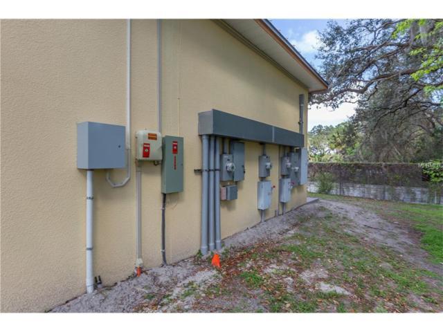 17759 Gunn Highway, Odessa, FL 33556 (MLS #U7840675) :: Team Bohannon Keller Williams, Tampa Properties