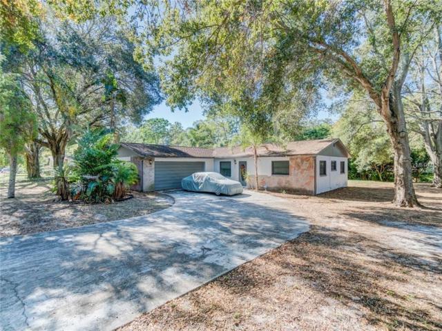 1604 W Virginia Lane, Clearwater, FL 33759 (MLS #U7840701) :: Burwell Real Estate