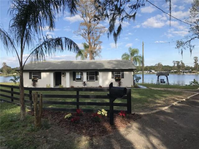 9601 Crescent Drive, Odessa, FL 33556 (MLS #U7840758) :: Team Bohannon Keller Williams, Tampa Properties