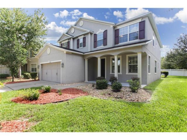 7252 Seedpod Loop, Wesley Chapel, FL 33545 (MLS #U7840777) :: Team Bohannon Keller Williams, Tampa Properties