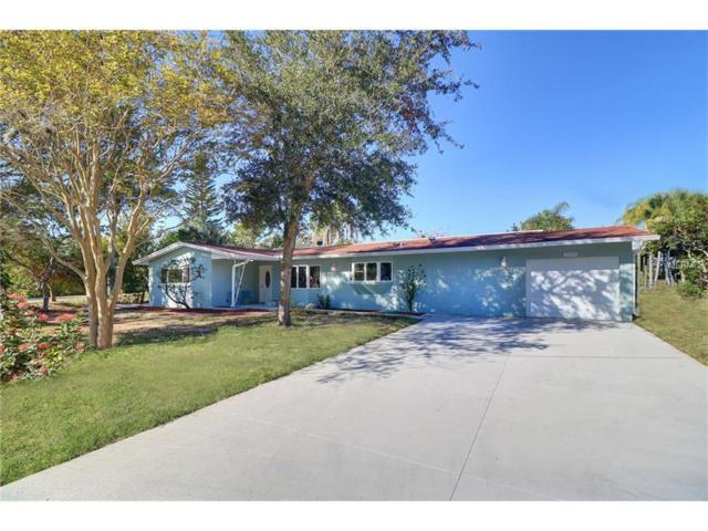 708 S Mayo Street, Crystal Beach, FL 34681 (MLS #U7840868) :: Chenault Group