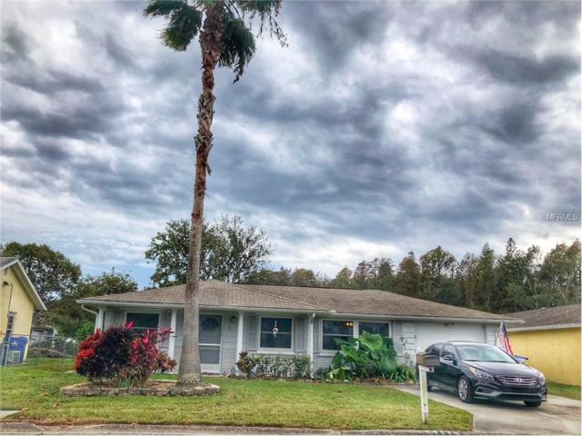 7146 Daggett Terrace, New Port Richey, FL 34655 (MLS #U7841125) :: Team Bohannon Keller Williams, Tampa Properties