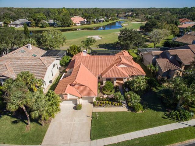 60 Turtle Creek Circle, Oldsmar, FL 34677 (MLS #U7841401) :: Revolution Real Estate