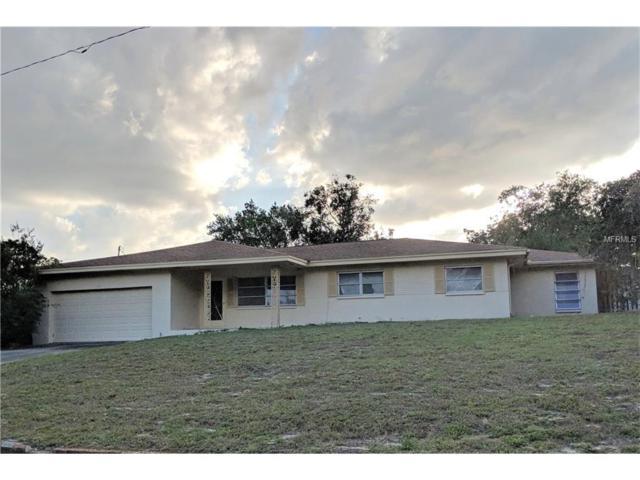 2218 Snead Avenue, Dunedin, FL 34698 (MLS #U7841504) :: Team Turk Real Estate