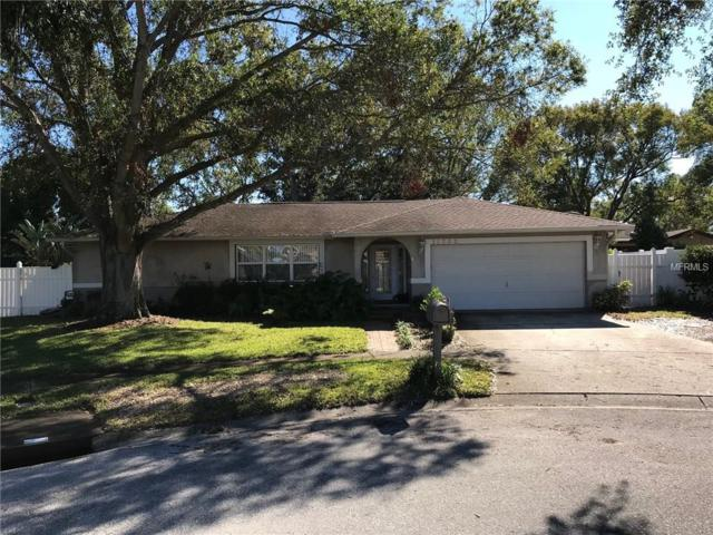 11782 David Court, Largo, FL 33778 (MLS #U7841577) :: Revolution Real Estate