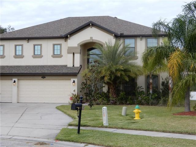 5875 95TH Avenue N, Pinellas Park, FL 33782 (MLS #U7841735) :: White Sands Realty Group