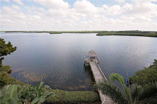4631 Harborpointe Drive, Port Richey, FL 34668 (MLS #U7841988) :: RE/MAX Realtec Group