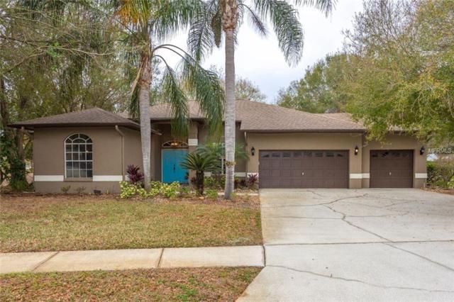 8515 Beth Court, Odessa, FL 33556 (MLS #U7842913) :: Team Bohannon Keller Williams, Tampa Properties