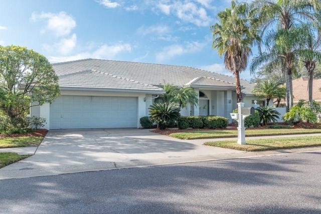1604 Huntington Lane, Safety Harbor, FL 34695 (MLS #U7843517) :: Chenault Group