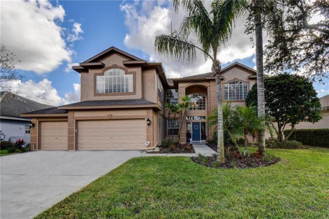 4632 Aylesford Drive, Palm Harbor, FL 34685 (MLS #U7843618) :: The Lockhart Team
