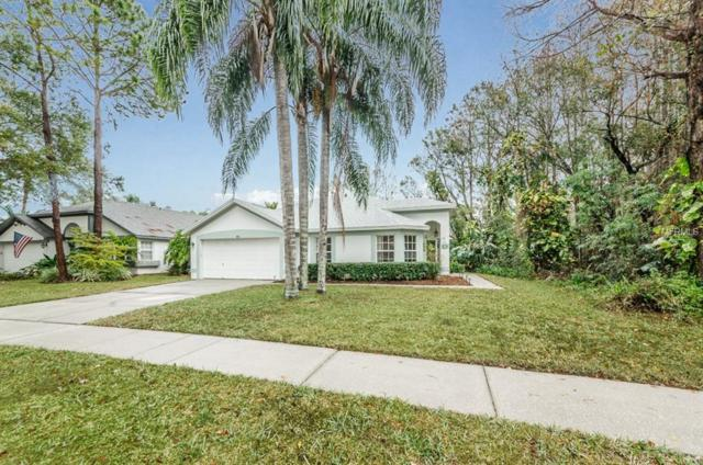 813 Crestridge Drive, Tarpon Springs, FL 34688 (MLS #U7844200) :: Chenault Group