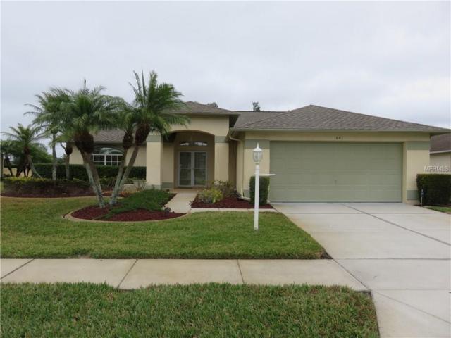 1041 Ashbourne Circle, Trinity, FL 34655 (MLS #U7844258) :: Delgado Home Team at Keller Williams