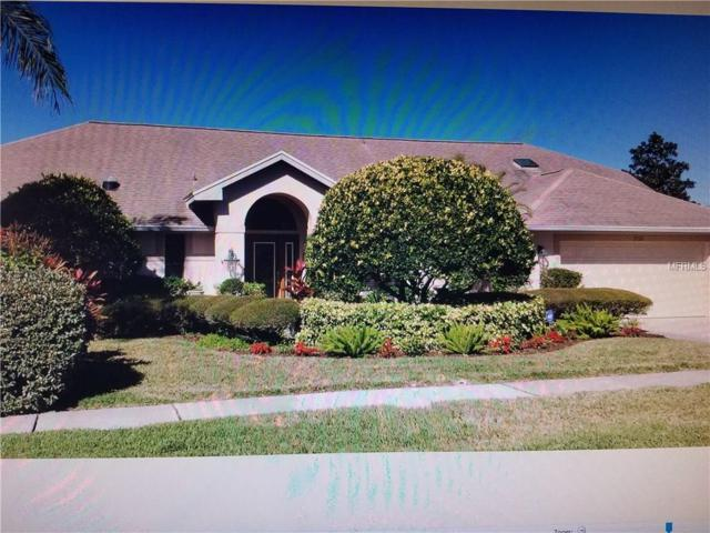 2926 Country Woods Lane, Palm Harbor, FL 34683 (MLS #U7844272) :: Chenault Group