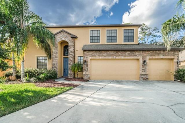 14945 Princewood Lane, Land O Lakes, FL 34638 (MLS #U7844337) :: Griffin Group